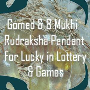 gomed and 8 mukhi