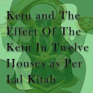 12 houses and ketu