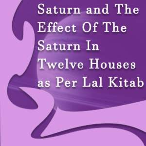 12 houses and saturn